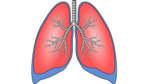 COPD -Respiratory PICS reaches China